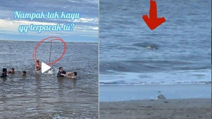 Detik-detik Ibu Syok Anaknya Berenang di Pantai Diintai Seekor Buaya, Video Viral
