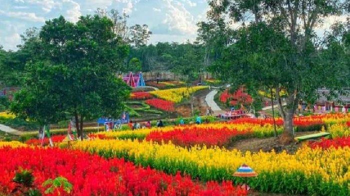 Nikmati Keindahan Taman Bunga Simpang Nibung Muratara, Rekomendasi Wisata Liburan Akhir Tahun