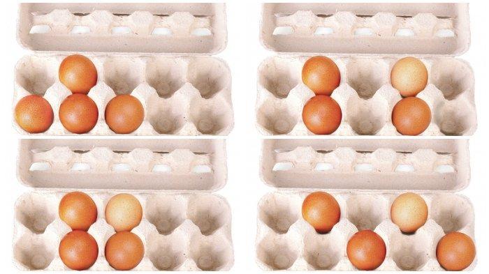 Apa Benar Makan Telur Bisa Sebabkan Bisul Atau Cuma Mitos? Ini Penjelasan dan Faktanya