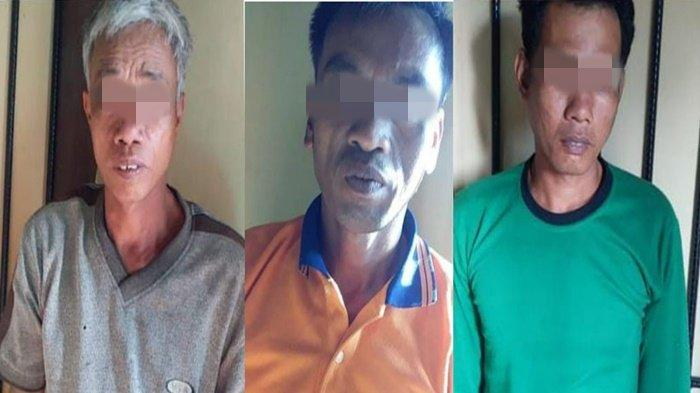 Pergoki  Buah Sawitnya Dipanen Maling, Petani di MusirawasLapor Polisi, 3 Pelaku Dibekuk