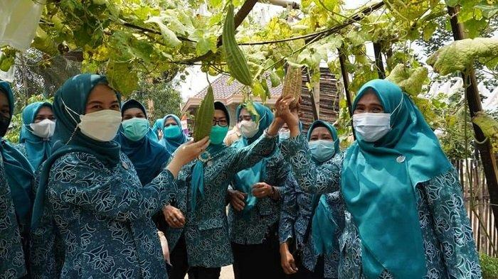 Kunker ke Lempuing Jaya, TP PKK Ogan Komering Ilir Tinjau Rumah Jamur Hingga Kebun Sayur - tim-penggerak-pkk-kabupaten-ogan-komering-ilir-kunjungi-lempuing-jaya.jpg