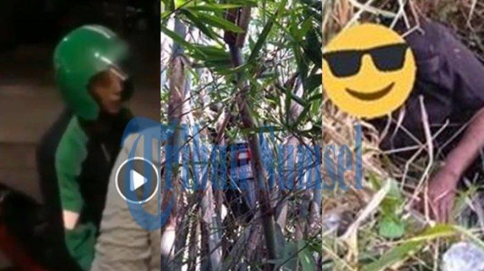 Viral Ojol Dapat Order Mistis, Motor Nyangkut di Atas Pohon Bambu, Driver Ditemukan di Semak-semak