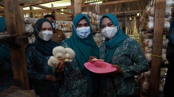 Kunker ke Lempuing Jaya, TP PKK Ogan Komering Ilir Tinjau Rumah Jamur Hingga Kebun Sayur - wakil-ketua-i-tim-penggerak-pkk-kabupaten-ogan-komering-ilir-hj-siti-rohani-shodiq.jpg