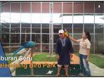 bird-park-palembang-jakabaring.jpg