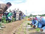 gubernur-sumsel-menyerahkan-bantuan-alat-mesin-pertanian-pra-panen-dan-pasca-panen.jpg