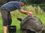 hewan-tertua-di-dunia-berusia-184-tahun-bernama-jonathan-baru-pertama-kali-mandi_20160724_160447.jpg