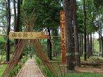 hutan-kota-wisata-punti-kayu-selasa.jpg