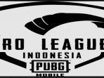 ini-daftar-20-tim-yang-bakal-meramaikan-pmpl-indonesia-season-3-minus-louvre-dan-4-tim-lainnya.jpg