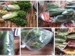 jual-sayur-online-palembang-jakabaring.jpg