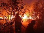 kebakaran-di-lahan-gambut-di-wilayah-desa-sungai-rambutan.jpg