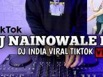 lirik-lagu-dj-nainowale-ne-india-remix-viral-di-tiktok-lengkap-terjemahan-bahasa-indonesia.jpg