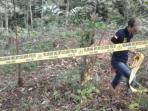 lokasi-kasus-pemerkosaan-dan-pembunuhan-siswi-smp-di-rejang-lebong-bengkulu_20160504_154435.jpg