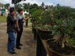 pameran-bonsai-lubuklinggau.jpg