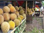 pedagang-buah-durian-di-pagaralam-tak-laku-terimbas-penutupan-tempat-wisata.jpg