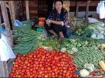 penjual-sayur-di-pasar-pulau-emas-kecamatan-tebing-tinggi-empat-lawang.jpg