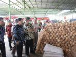penolakan-kelapa-ke-thailand.jpg