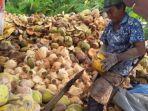 petani-kelapa-di-desa-muara-sungsang-kabupaten-banyuasin-selasa-15112016_20180814_044910.jpg