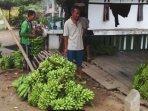 petani-pisang-di-oku-selatan-ss.jpg