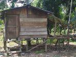 pondok-tempat-tinggal-amri-bersama-keluarga-kecilnya-di-desa-noman-baru.jpg