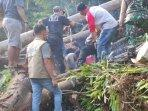 proses-evakuasi-korban-ditimpa-pohon.jpg