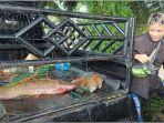 rendi-warga-tiugu-mulyo-panen-ikan-saat-irigasi-dikeringkan-kamis-1692021.jpg