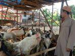 riansyah-30-penjual-hewan-kurban-dibilangan-kelurahan-handayani-mulya1234.jpg