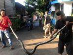 ular-4-meter-di-pondok-aren.jpg