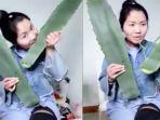 zhang-memakan-tumbuhan_20170701_192411.jpg
