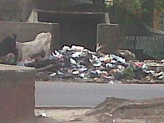Sampah Berserakan di Samping Polsekta SU I Palembang