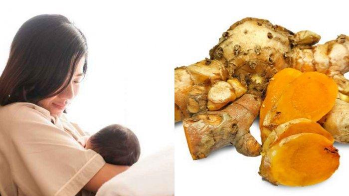 5 Jenis Makanan yang Dapat Lancarkan Produksi ASI, Ada Temulawak hingga Bawang Putih