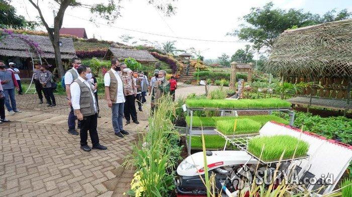 Pengembangan Agrowisata Tamansuruh di Banyuwangi Dapat Dukungan Kementerian PUPR