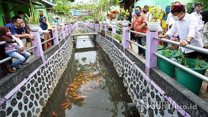 Banyuwangi Gencarkan Program Tebar Ikan Terkendali, Jaga Kebersihan Sungai
