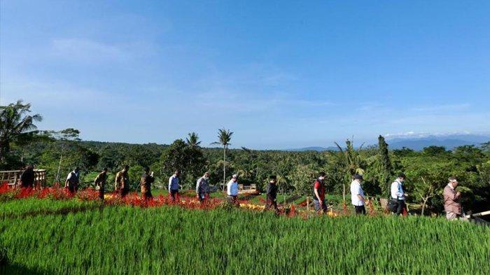 Membudayakan Generasi Milenial Banyuwangi, Menjadi Petani Itu Keren!