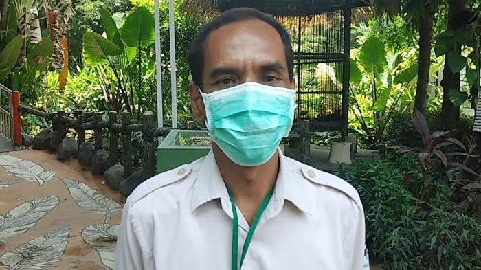 Koleksi Satwa di Kebun Binatang Surabaya Kian Bertambah