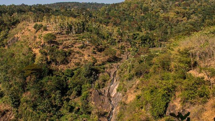 Arak-arak Bondowo, Nikmati Pesisir Pantai Utara Jawa Sekaligus Pemandangan Alami Dataran Tinggi