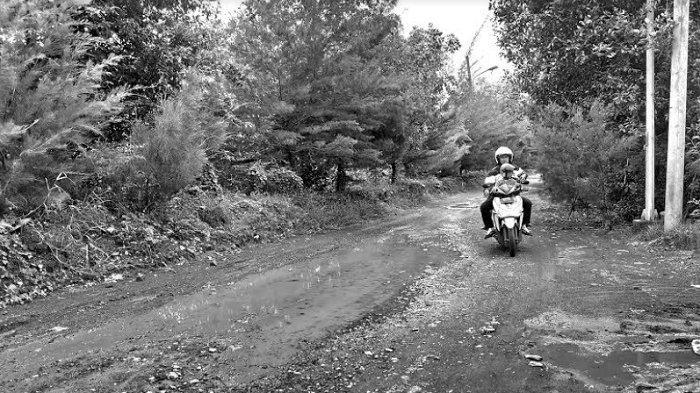 Jalan Berlubang dan Bergelombang di Kawasan Mangrove Gununganyar Dikeluhkan Warga