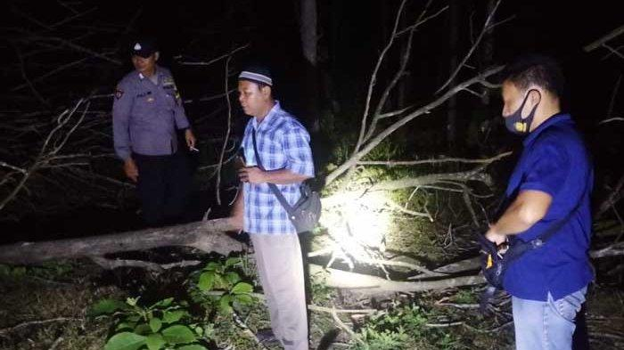 Cerita Pria Asal Tulungagung Tewas Tertimpa Pohon yang Ditebangnya Sendiri