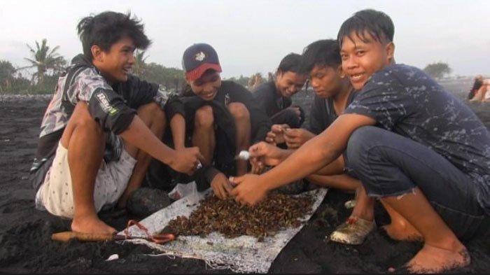 Kisah Nelayan di Pasirian Lumajang, Melawan Ganasnya Ombak Berburu Kerang Simping
