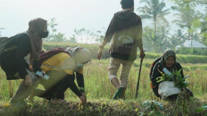 Cara Komunitas Green Nusantara Convertation untuk Lestarikan Lingkungan di Desa Kesemek Bondowoso