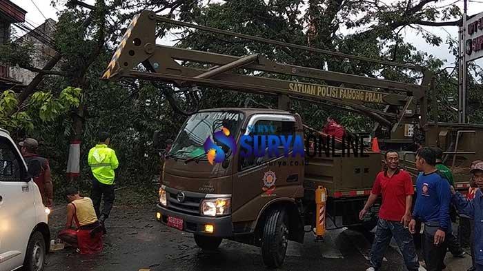Data Terbaru, Ada 17 Titik Pohon Tumbang Akibat Angin Kencang di Kota Blitar