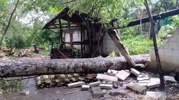 Puting Beliung Porak-Porandakan Satu Desa di Kediri, Satu Warga Tertimpa Pohon