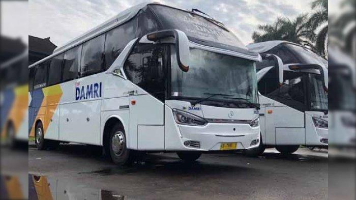 Penyesuaian Tarif Tiket Bus Damri saat Libur Natal dan Tahun Baru, Surabaya-Jakarta Rp 285.000