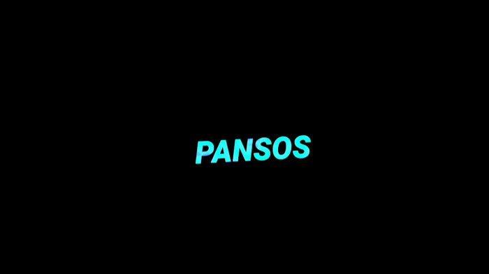 Arti Pansos yang Populer di Kalangan Selebriti dan Medsos Instagram, Facebook serta Twitter