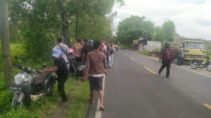 Pengendara Vario di Bangkalan Madura Tewas setelah Tabrak Pohon Akasia, Korban Diduga Ngantuk