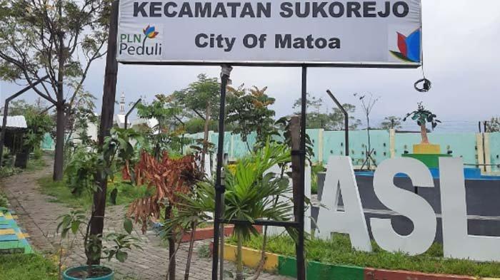 Peduli Penghijauan, PLN Beri Bantuan Bibit Matoa kepada Masyarakat Kecamatan Sukorejo Pasuruan