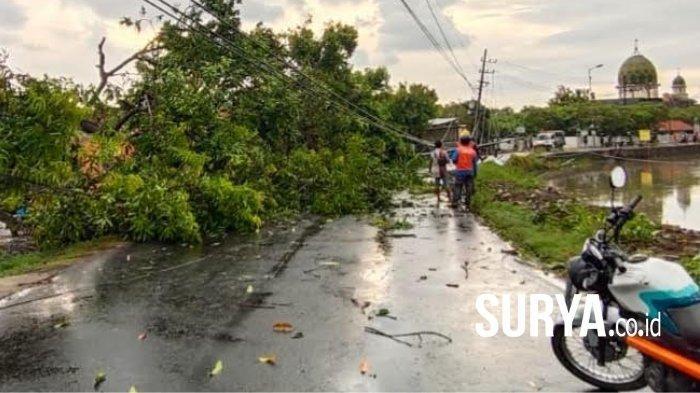 Angin Kencang Mengamuk di Sidoarjo, Tiang Listrik dan Pohon-pohon Banyak yang Ambruk