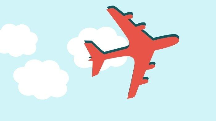 Pesawat Rimbun Air Hilang Kontak di Intan Jaya Wilayah Rawan KKB Papua, Berikut Kronologinya