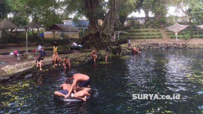 Pemandian Banyu Biru Pasuruan Nikmati Sensasi Berenang Bareng Ikan Keramat Surya