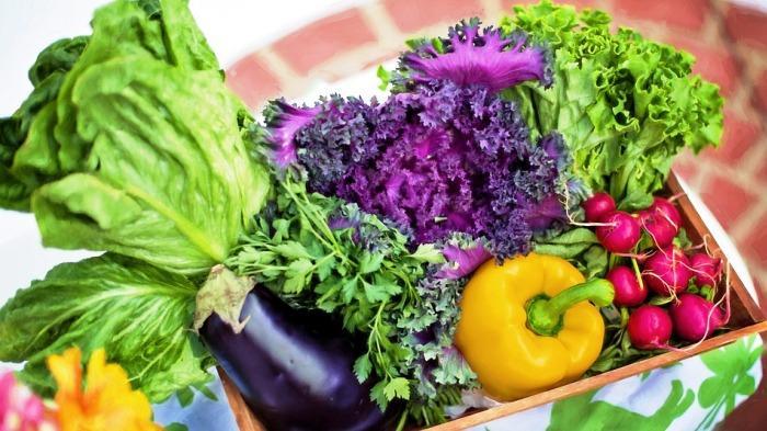 Jaga Pola Makan saat Puasa, begini Tips-tips agar Tubuh Tetap Segar