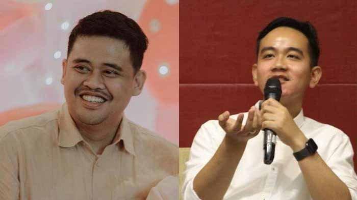 Anak dan Menantu Presiden Jokowi Jabat Wali Kota, Gibran atau Bobby Lebih Kaya? Selisih Rp 33 Miliar